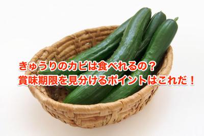 Cucumber mold