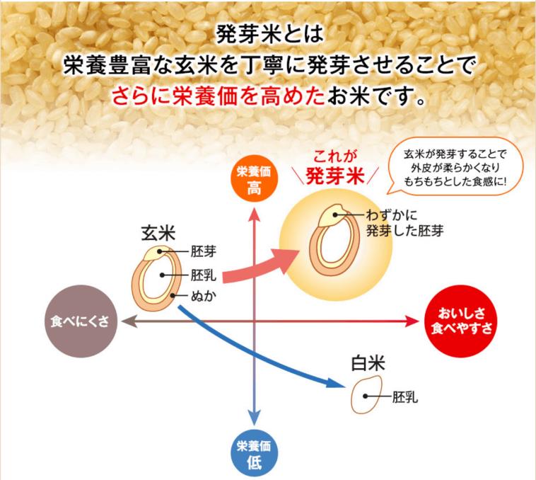 発芽米の栄養価が高いとわかる画像