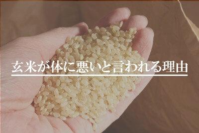 玄米が体に悪いと言われる理由