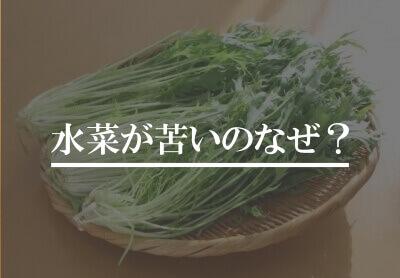 水菜が苦いのはなぜ?